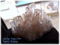 画像1: 天然水晶クラスター 標本 原石(別名:クォーツ quartz 石英) No.3471 (1)