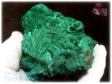 画像10: 巨大結晶 340g超級 希少限定収蔵品 コンゴ産 ベルベット マラカイト 結晶標本 (別名:孔雀石 ビロードマラカイト Velvet Malachite 天鵞絨孔雀石 ) No.3554 (10)