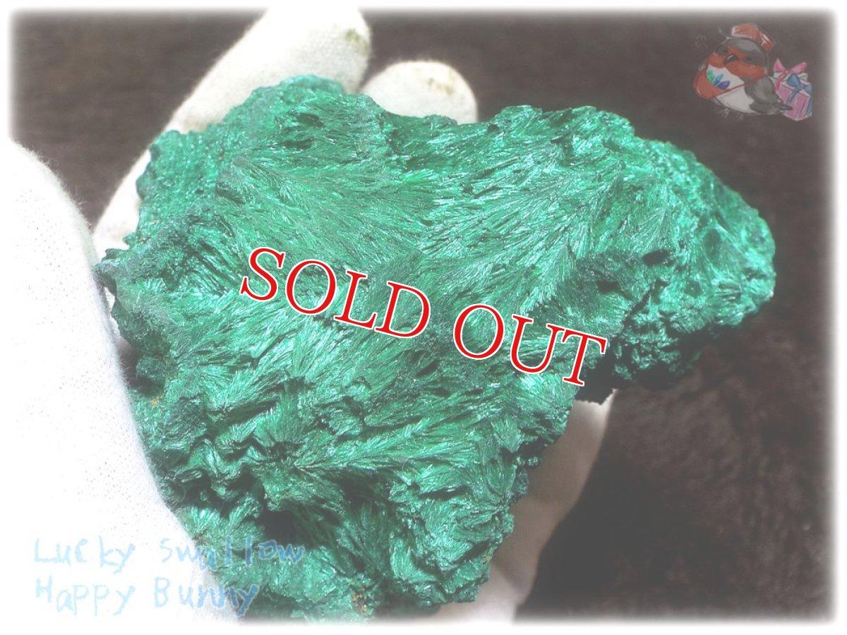 画像1: 巨大結晶 340g超級 希少限定収蔵品 コンゴ産 ベルベット マラカイト 結晶標本 (別名:孔雀石 ビロードマラカイト Velvet Malachite 天鵞絨孔雀石 ) No.3554 (1)