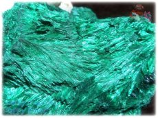 画像2: 巨大結晶 340g超級 希少限定収蔵品 コンゴ産 ベルベット マラカイト 結晶標本 (別名:孔雀石 ビロードマラカイト Velvet Malachite 天鵞絨孔雀石 ) No.3554 (2)