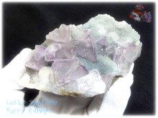 画像1: 約259g フローライト+カルサイト クラスター マトリックス標本 インテリア 結晶 (別名:fluorite 蛍石 螢石 calcite 方解石 ) No.3556 (1)