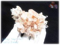 画像2: 約269g 水熱育成法 ユニーク 人工水晶 クォーツ クラスター インテリア 結晶 (別名:クォーツ 水晶 石英 ) No.3559 (2)