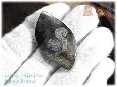 画像4: りすちゃんカービングルース ラブラドライト リス 栗鼠  No.3863 (4)