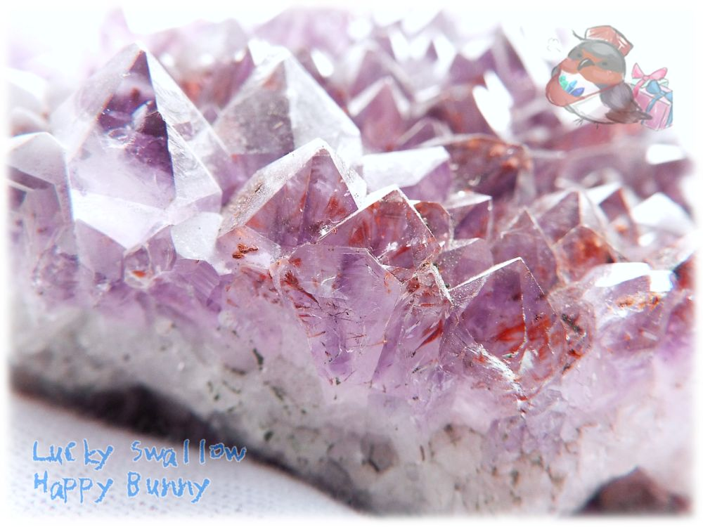 画像1: 希少 特殊 カナダ産 アメジストクラスター 標本 原石(別名:アメシスト 紫水晶) No.3403 (1)