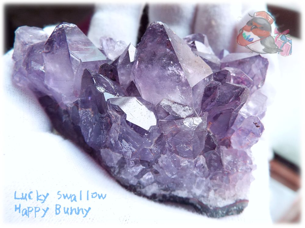 画像1: カナダ産 アメジストクラスター 標本 原石(別名:アメシスト 紫水晶) No.3408 (1)