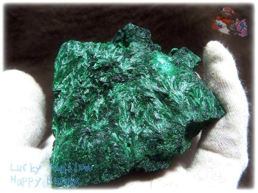 画像1: 460g超級 希少限定収蔵品 コンゴ産 ベルベット マラカイト 結晶標本 (別名:孔雀石 ビロードマラカイト Velvet Malachite 天鵞絨孔雀石 ) No.3552 (1)