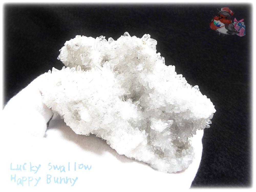 画像1: 約438g マダガスカル産 タイニークォーツ クラスター インテリア 結晶 (別名:クォーツ 水晶 石英 ) No.3557 (1)